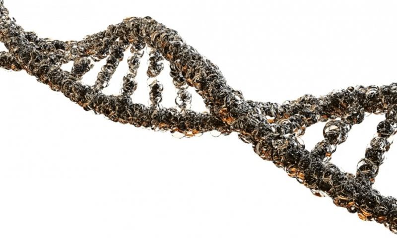 SalioGen raises $20M to validate non-viral gene therapy platform