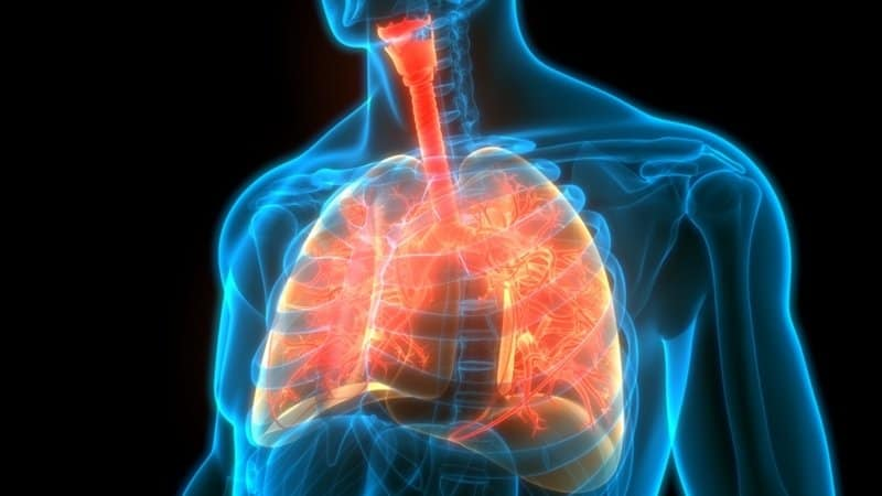 Pliant's lung disease drug is getting where it needs to be, but efficacy data are still to come