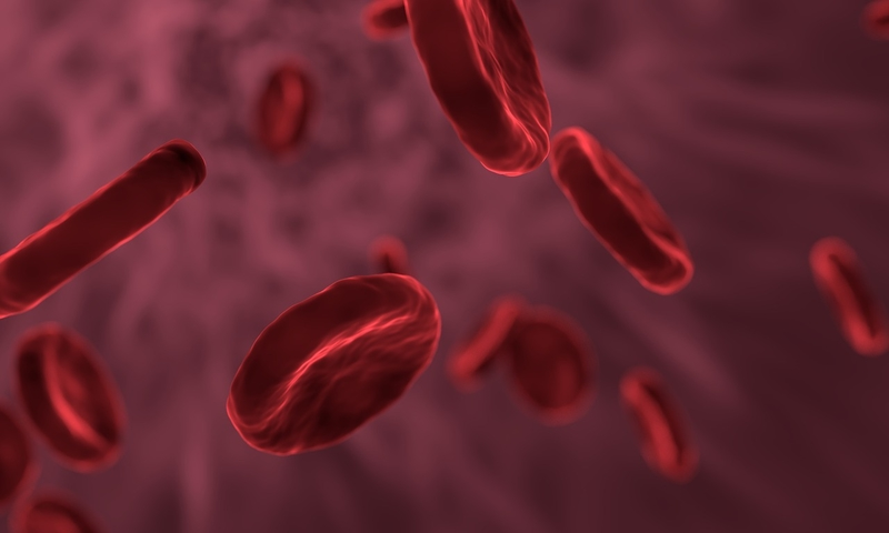 FDA hits pause on Protagonist's blood cancer med after mouse study turns up skin tumors